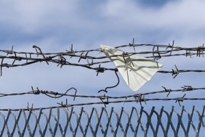 paper plane made of a visa document gets stuck in barbed wire, blue sky and copy space